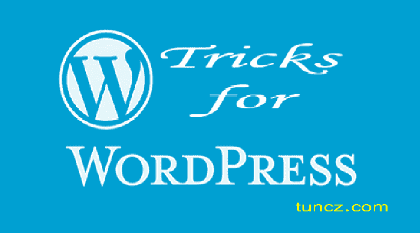 WordPress : Remove shadow overlay on the header image, without coding
